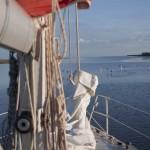 arbutus_sailing_carentan-10